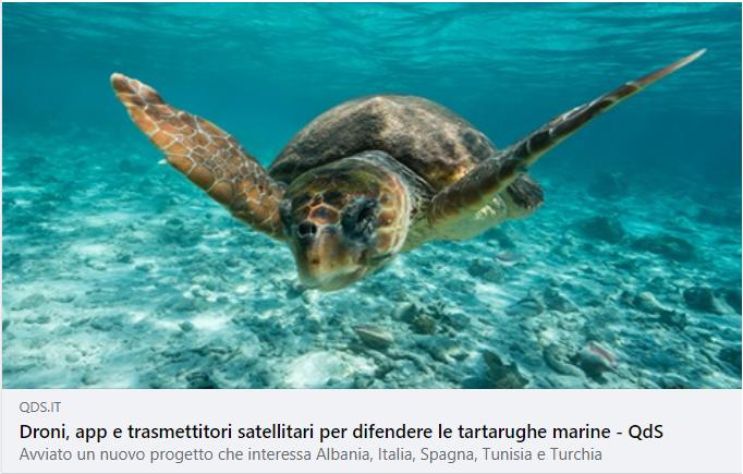 Droni, app e trasmettitori satellitari per difendere le tartarughe marine